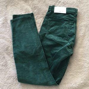 LOFT Green Velvet Skinny Pants size 28 (6) NWT
